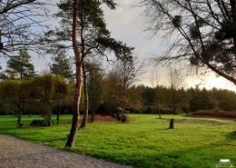 Grand parc arboré a quelque minutes de Nantes au Chateau de la Rairie (44)
