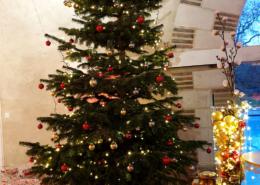 Arbre de Noël d'une entreprise au Chateau de la Rairie près de Nantes