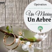 Opération 1 Mariage 1 arbre pour l'amour et la planète 44